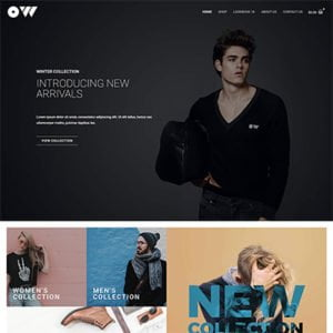 half homepage screenshot of a UI & UX design template of CLothing and accessories online Store eCommerce Website Design and development company in bangalore India